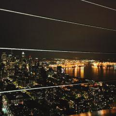 Space Needle User Photo