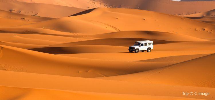 Desert Safari Travel Guidebook Must Visit Attractions In