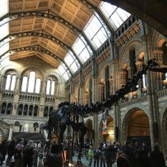 Natural History Museum User Photo