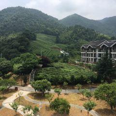 밍 온천 여행 사진