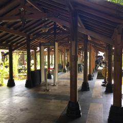 족자카르타 여행 사진