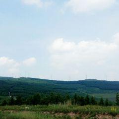 草原天路用戶圖片