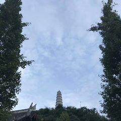 圓通寺用戶圖片