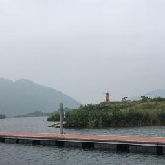 仙島湖仙湖畫廊用戶圖片