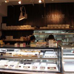 L'avenue User Photo