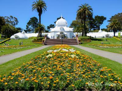 샌프란시스코 식물원