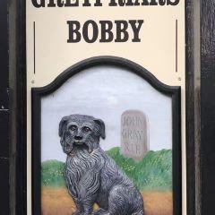 Greyfriars Bobby User Photo