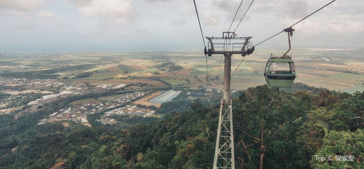 Skyrail熱帶雨林纜車1