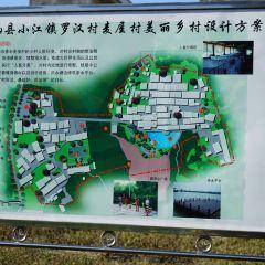 小江銀杏園用戶圖片