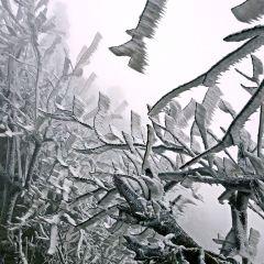 衡山風景名勝區用戶圖片