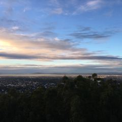 Brisbane Lookout Mt. Coot-tha User Photo