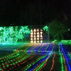 Zhongyuan Green Estates User Photo