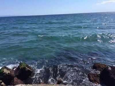 KKELM fishing and whale wtaching