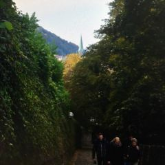 철학자의 길 여행 사진
