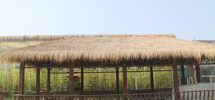 Ulugu Tropical Botanical Garden2