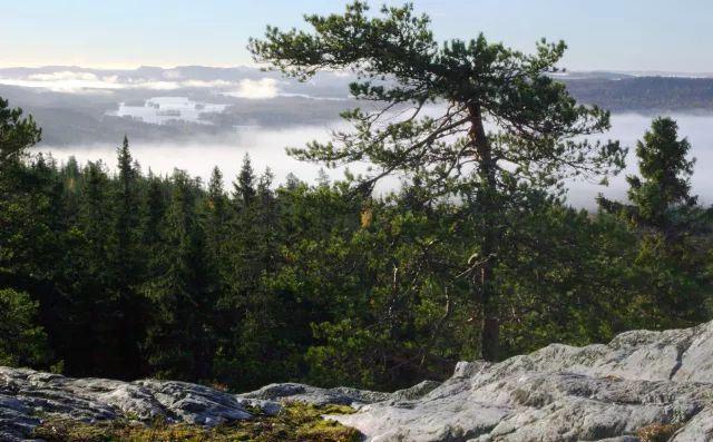 芬蘭那些奇特的自然景觀