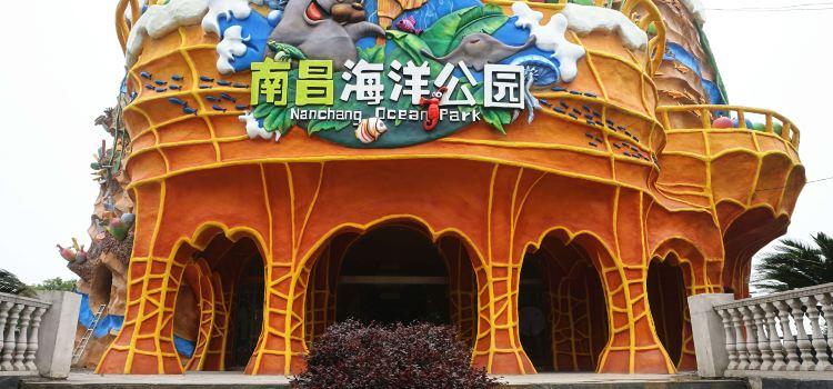 南昌海洋公園3