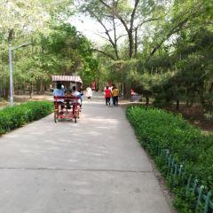 Langfang Nature Park User Photo