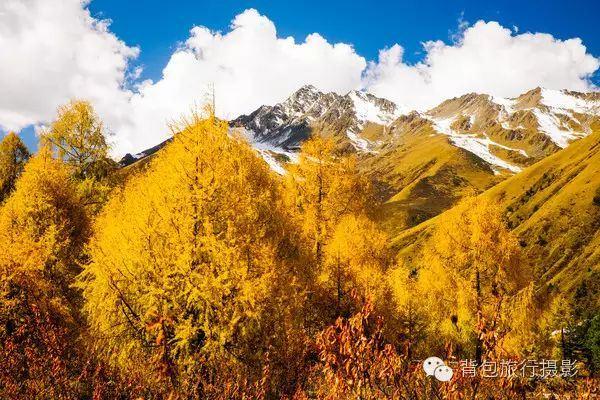 鷓鴣山的秋和冬,一個成都人都不知道的祕境