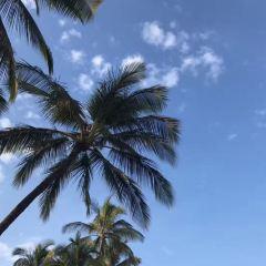 Little Beach User Photo