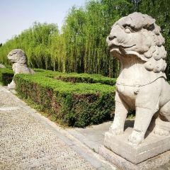 明皇陵用戶圖片