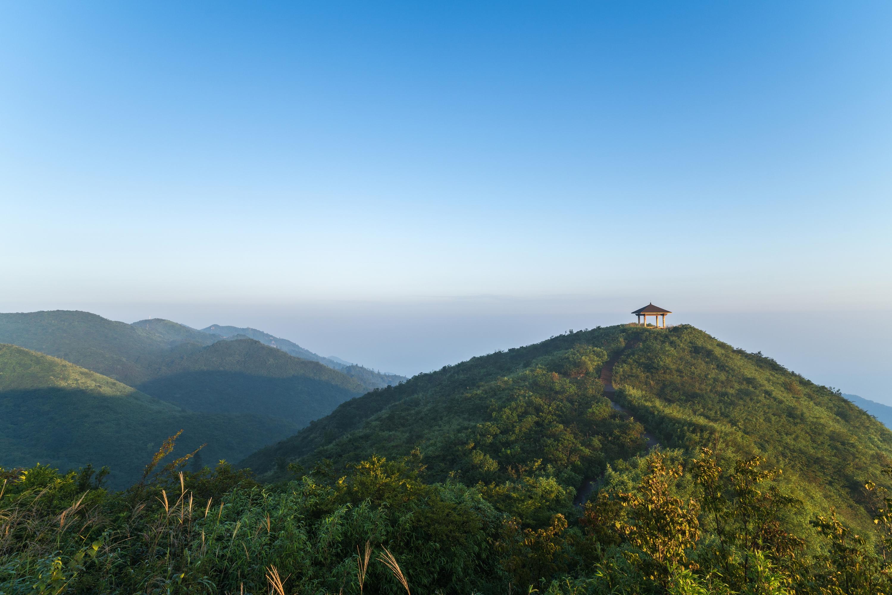 大囲山国家森林公園