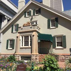 Lion House User Photo
