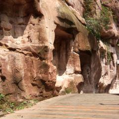 邛崍石窟用戶圖片