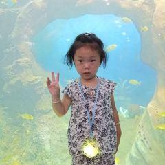 취장(곡강) 해양극지공원(하이양지디공위안) 여행 사진