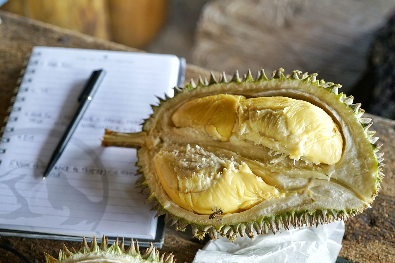 Bao Sheng Durian Farm | Tickets, Deals, Reviews, Family Holidays