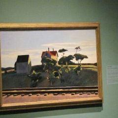 印第安納波利斯美術館用戶圖片