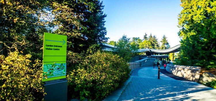 VanDusen Botanical Garden3