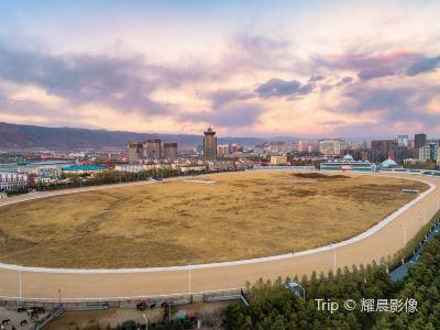 内蒙古賽馬場