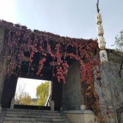 사마소 소주방 여행 사진