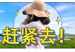 媲美濟州島!廣州附近這座浪漫小城,隨手一拍就是大片,高鐵出發只要1h!