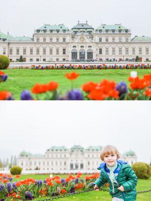 維也納,推薦