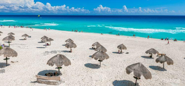 Playa Delfines1