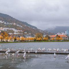 West Norway Museum of Decorative Art User Photo