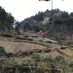 아하후국제습지공원 여행 사진