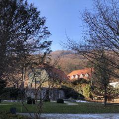 Schloss Eggenberg User Photo