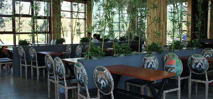 小熊貓餐廳1