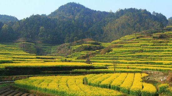 Shuyuan Youyungu Scenic Area