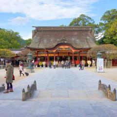 能古島海島公園(Nokonoshima Island Park)用戶圖片