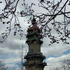 Zizhuyuan Palace User Photo