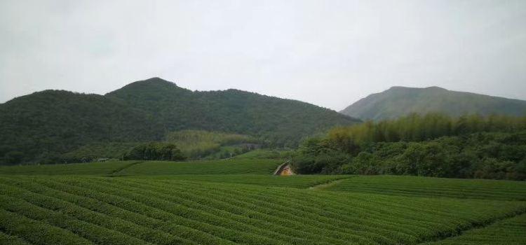 龍池山自行車公園1