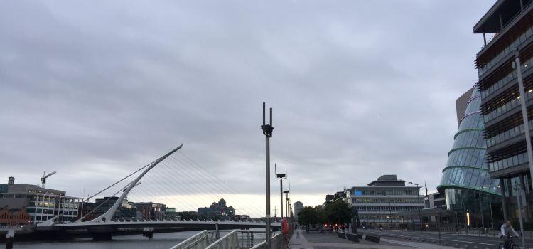 Samuel Beckett Bridge2