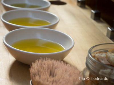 Olive Mill Pečarič (Oljarna Pečarič)