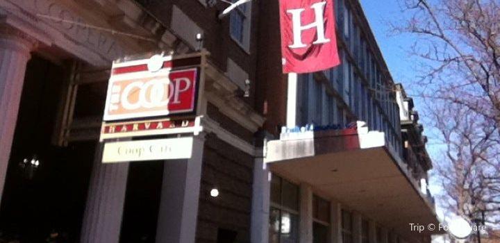 Harvard COOP Cafe