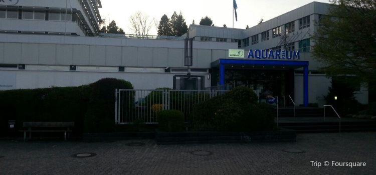 Aquarium Kiel2