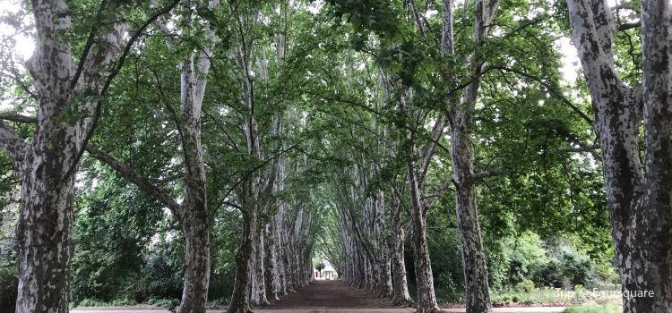 KwaZulu-Natal National Botanical Garden2